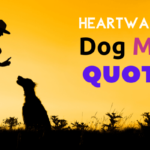 best dog mom quotes
