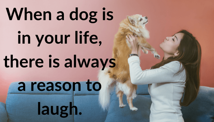 dog love quotes