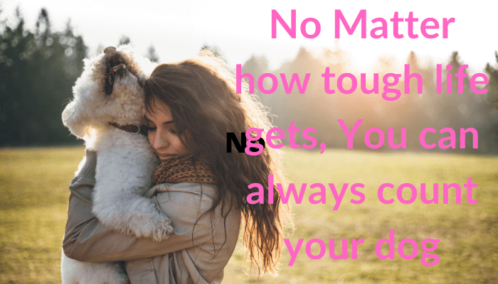 dog love quote