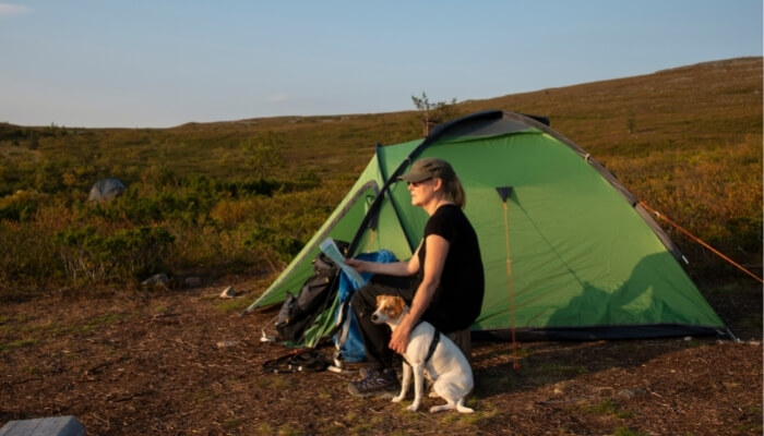 Best Dogs for Camping and Hiking