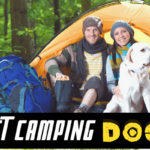 Best Camping dogs